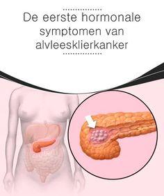 De eerste hormonale symptomen van alvleesklierkanker  Alvleesklierkanker is een van de soorten kanker met de slechtste prognose, omdat het de hormoonproductie van het orgaan verandert, wat ernstige gevolgen heeft. Healthy Summer Recipes, Edgy Hair, Body Care, Anti Aging, Cancer, Strength Training Women, Rust, Fibromyalgia, Anatomy