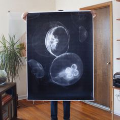 Covet: Large Format Print by Debbie Carlos