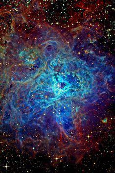 Tarantula Nebula, aka 30 Doradus & NGC 2070, a large celestial region that is more than 170,000 ly away. weareallstarstuff