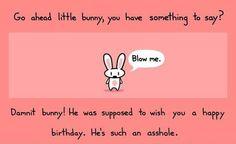 whoa bunny!