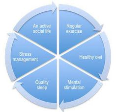 The six pillars of a brain-healthy lifestyle are:    Regular exercise   Healthy diet   Mental stimulation   Quality sleep   Stress management   An active social life   The more you strengthen each of the six pillars in your daily life, the healthier your brain will be.   via Celina Lopez
