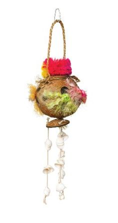 Prevue Hendryx 62509 Tropical Teasers Coconut Fun Bird Toy -- Click image for more details.Note:It is affiliate link to Amazon.