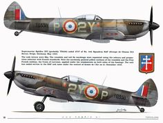 XVI of French Army de lair. Ww2 Aircraft, Fighter Aircraft, Military Aircraft, Fighter Jets, Luftwaffe, Spitfire Supermarine, Belle France, The Spitfires, Aircraft Painting
