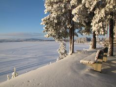 Winter day in Sotkamo. Whole Nother Level, Snow And Ice, Winter Day, Beautiful Scenery, Finland, Winter Wonderland, Places To Visit, Heaven, In This Moment