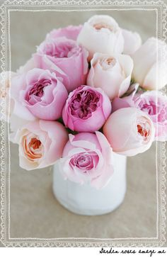 garden roses ~ via acreativemint.typepad.com