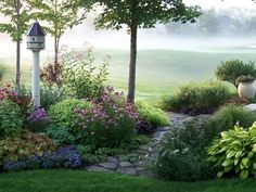 A misty dream garden