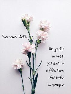 1b881bbdc01 Romans New International Version (NIV) 12 Be joyful in hope