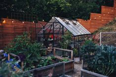 "Excellent ""greenhouse design layout"" info is available on our web pages. Read more and you wont be sorry you did. Potting Bench With Sink, Green House Design, Building A Chicken Coop, Diy Patio, Growing Vegetables, Backyard Landscaping, Backyard Greenhouse, Amazing Gardens, Landscape Design"