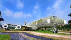 Emirates Flower Plane