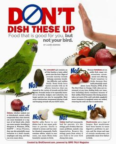 Don't give to your FIDs!