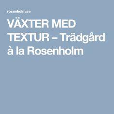VÄXTER MED TEXTUR – Trädgård à la Rosenholm
