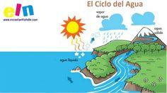 Ficha Educativa: Aprender el Ciclo del Agua