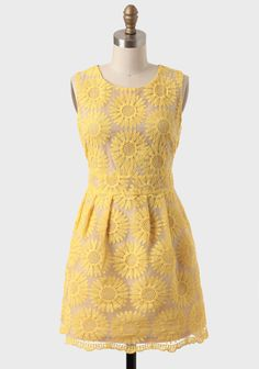 St. Claire Embroidered Floral Dress