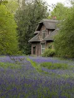 Queen Charlotte's cottage ~ Kew Gardens http://www.myendlessinspiration.com/search/label/Gardens ~   Vanya Wilkinson