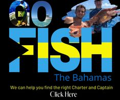 Your resource for all things Bahamas fishing, snorkeling and other water sports adventure. Book your next charter with one of our BSFN certified experts, get your gear from shirts to lures and head out for a day you will never forget. Cliff Diving, Fishing Charters, Fishing Guide, Sport Fishing, Deep Water, Saltwater Fishing, Island Life, Water Sports, Snorkeling