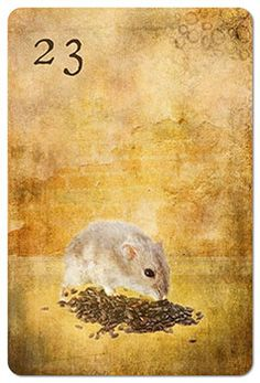 Mondnacht Lenormand Karte 23: Mäuse