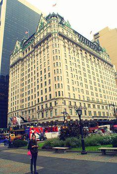 :) New York legelegánsabb szállodája. Nyc Hotels, New York Hotels, Luxury Hotels, Hotels And Resorts, Best Hotels, Wonderful Places, Amazing Places, Visiting Nyc, New York Travel