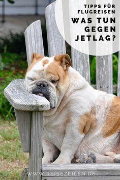 Bleierne Müdigkeit, fehlende Konzentration, Kopfschmerzen, schlechte Laune - das sind die typischen Symptome des Jetlags. Aber was kann man dagegen tun?