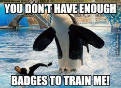Need more badges. I knew it! http://mbinge.co/1AOqrdw