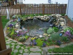 Water Garden Ideas | picture of a water pond design with a lot of color.