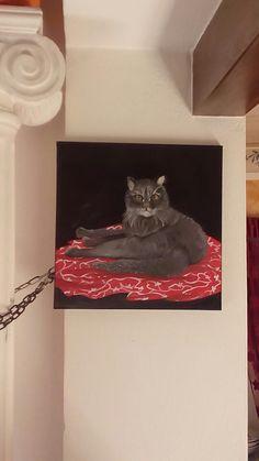 Ritratto del mio gattaccio 20enne ....