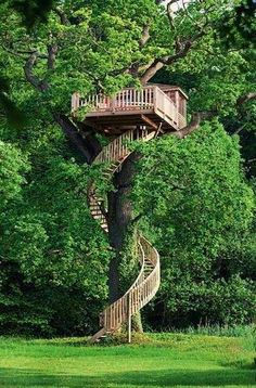 Tree house anyone? View tree houses of different shapes and sizes in this albu… Tree house anyone? View tree houses of different shapes and sizes in this album here: theownerbuilderne… Is building a tree house on your backyard project list? Outdoor Spaces, Outdoor Living, Outdoor Decor, Tree House Designs, Diy Tree House, Adult Tree House, Tree House Homes, Tree House Deck, Indoor Tree House