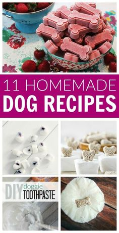 Pamper your Puppy Pets with these simple and easy recipes for dog shampoo snacks treats toys freshener odor remover and more! The post DIY Homemade Dog Recipes appeared first on Selber Machen Ideen. Puppy Treats, Diy Dog Treats, Healthy Dog Treats, Frozen Dog Treats, Homeade Dog Treats, Peanut Butter Dog Treats, Nutter Butter, Dog Biscuit Recipes, Dog Treat Recipes