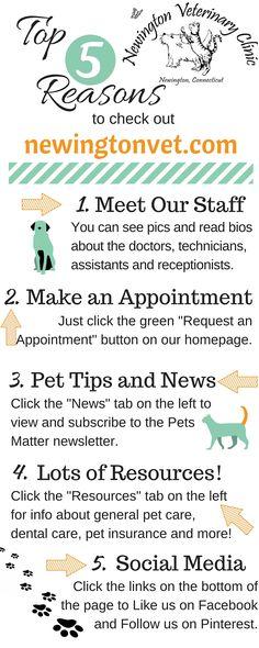 Top 5 Reasons to visit newingtonvet.com