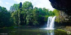 Killen Falls is a large swimming hole on Emigrant Creek with a waterfall at one end. There are some deep sections and many submerged rocks and shallower areas. Best Swimming, Swimming Holes, Byron Bay, Countries Of The World, Australia Travel, Dream Vacations, Beautiful World, Places To See