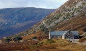 Alladale Wilderness Reserve in Scotland- great for wildlife (salmon, buzzards, peregrine falcons, ospreys, deer, wild boars, pine martens, otters, elk)