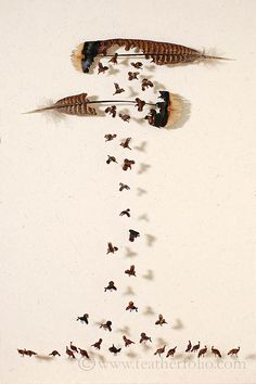 Tiny Playful Birds Emerge Out of Hand-Carved Feathers - My Modern Metropolis