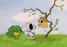 Woodstock gets a new house.