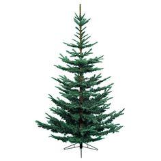 Everlands 10ft Nobilis Fir Artificial Christmas Tree - Blue