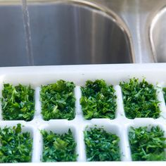 How to Freeze Herbs  Looking for an easy way to preserve the fresh taste of summer herbs? Make frozen herb cubes!