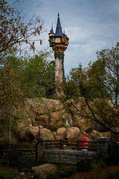 <3  Magic Kingdom ~ Tangled Tower  <3