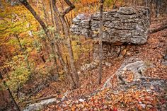 Majestic Panther Knob - Majestic Panther Knob at the Height of Autumn in Monte Sano State Park, Alabama