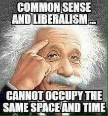 good mornins fuck you funny as hell Funny As Hell, You Funny, Funny Shit, Funny Stuff, Hilarious, Liberal Logic, Political Memes, Conservative Politics, Trump