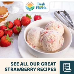 Get a taste of summer with our Florida Strawberry Ice Cream recipe. Who says you can't enjoy ice cream in January? This delicious, Fresh From Florida creation is a cool, unexpected winter treat. Strawberry Ice Cream, Strawberry Recipes, Fruit Recipes, Baking Recipes, Dessert Recipes, Recipies, Ice Cream Desserts, Frozen Desserts, Ice Cream Recipes