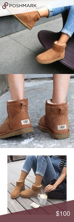 UGG Classic Mini Women's SZ 9 / Men's SZ 8   Color: Chestnut       Too big for me, so I'm selling. . These could probably fit a Women's SZ 10 / Men's SZ 9 as well! Shoes Winter & Rain Boots