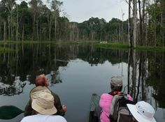IE pioneered travel to the Peruvian Amazon 32 years ago, and more than 30,000 guests have enjoyed our immersive Amazon River cruise.