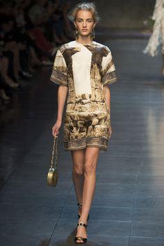 Dolce & Gabbana - Spring/Summer 2014 - Milan