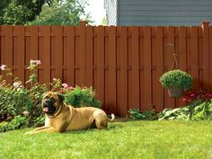 dog ear fence panels dog ear privacy woodshades composite fencing available at lowe 39 s for. Black Bedroom Furniture Sets. Home Design Ideas