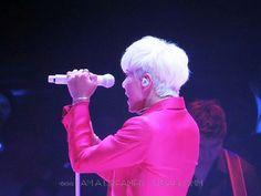 My One And Only, K Idols, Viral Videos, Trending Memes, Seoul, The Dreamers, Funny Jokes, Korean, Park