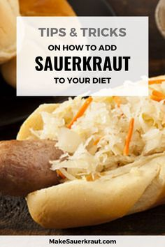 Make a boring sandwich scrumptious by adding a nice layer of sauerkraut! Check out 33 simple ideas on how to eat sauerkraut. Add probiotics to your meals and snacks from pizza, avocado toast, mango-kimchi salad and other delicious delights. Healthy snacks for kids and adults alike. #guthealth Fermented Cabbage, Fermented Foods, Dog Snacks, Recipes For Beginners, Sauerkraut, Healthy Snacks For Kids, Kimchi, Recipe Using, Hot Dog Buns