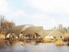 Atelier CMJN, Great Fen Visiting Center, Cambridgeshire, rainwater collection, eolic turbine, fen, organic architecture, adaptation, Architecture, Green Materials, Daylighting, green Interiors, energy efficiency,