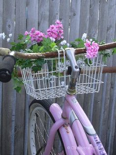 pink bike and pinkest basket by house wren studio (Charlotte Lyons)