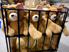 Big Hunka Love Bears in a cage!