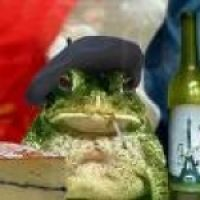 Frog Discover I Love Paris lol Funny Frogs, Cute Frogs, Baby Animals, Funny Animals, Cute Animals, Animal Memes, Funny Frog Pictures, Frog Pics, Sapo Frog