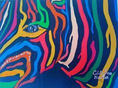 Multicolor zebra 2011