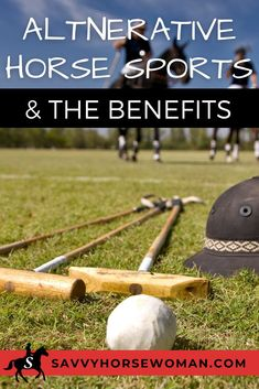 Unique equestrian sports are fun and have lots of benefits. Here are some of the horse sports you don't usually think of! Horseback Riding Tips, Horse Riding Tips, Tack Room Organization, Horse Care Tips, Baby Horses, Horse Training, Horse Farms, Horse Photography, Equestrian Style